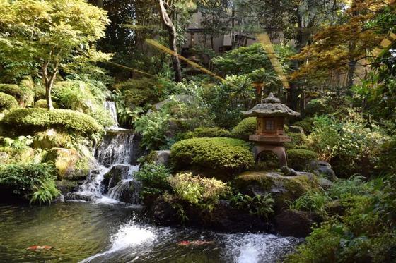 素敵な庭園