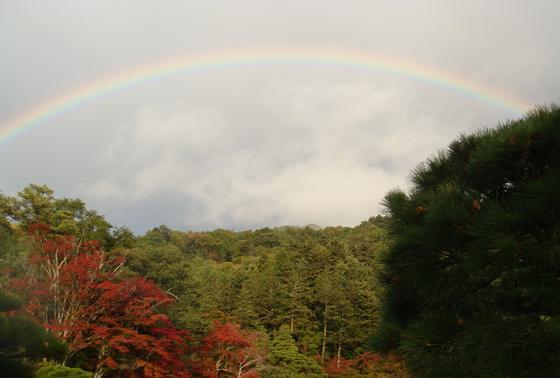 な、なんと、虹!!!