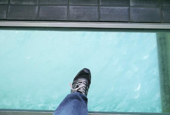 ガラス張りの床面