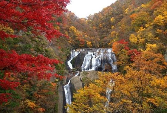 紅葉に映える滝