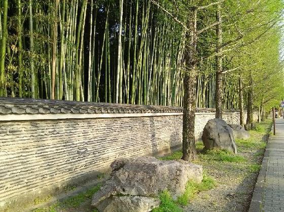 大徳寺の「瓦土塀」がいい感じ