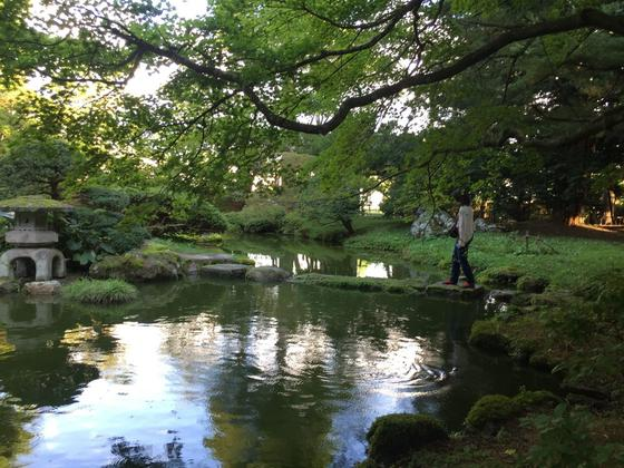 綺麗な庭園