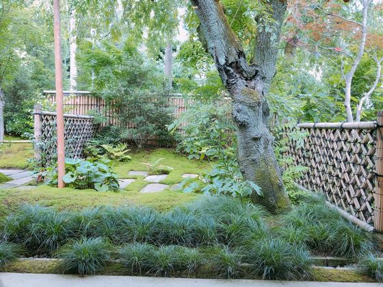 目の前は庭園