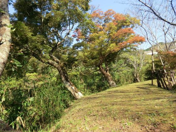 ふもと川沿いの遊歩道