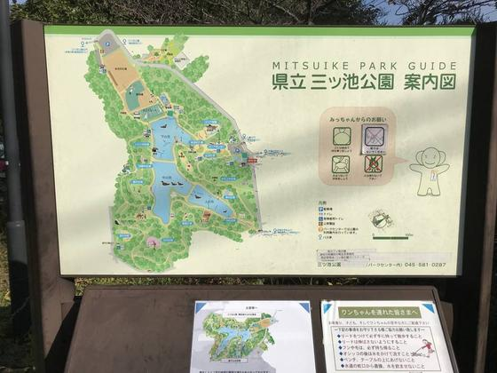 よく整備された公園です♪