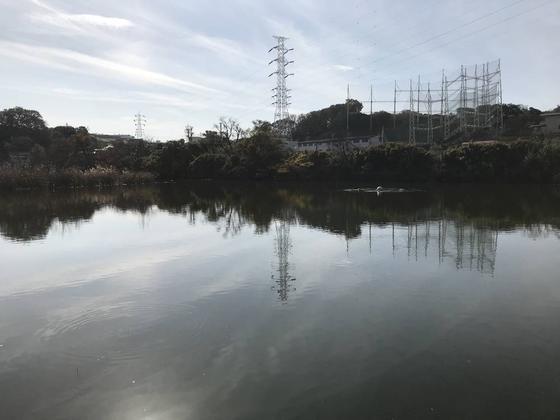 池の真ん中には噴水らしき何か