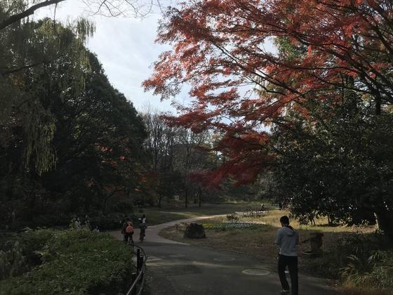公園西口側