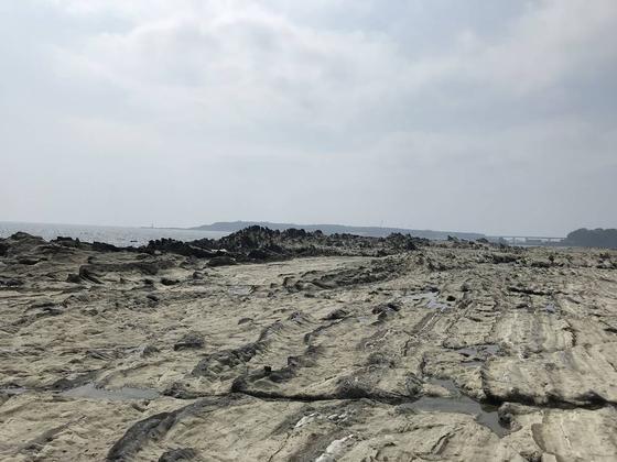城ヶ島が見えました。