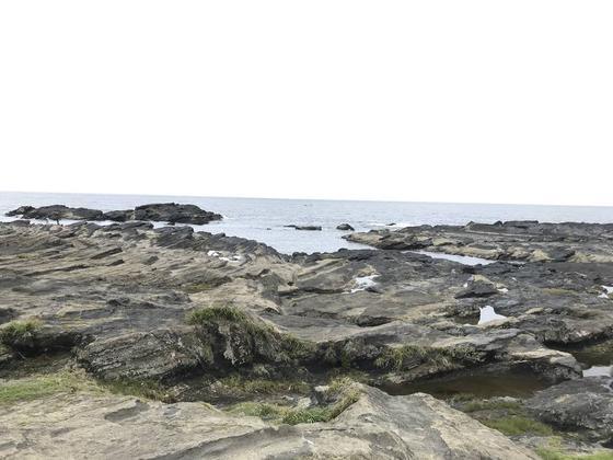 岩礁や断崖が織り成す景観