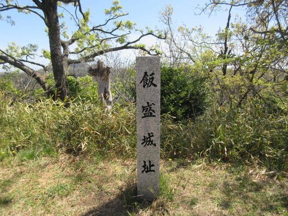 飯盛山城への総攻撃