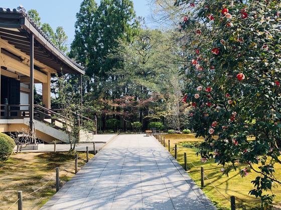 新霊宝館と庭