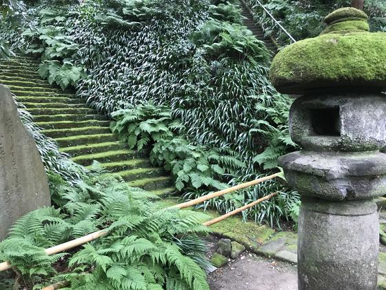 やぐら側からの階段