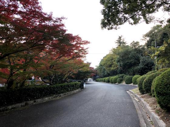 庭園~駐車場
