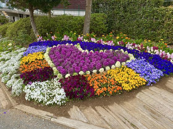 道の駅周辺の花壇