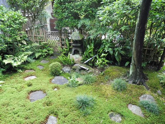 お茶室の庭