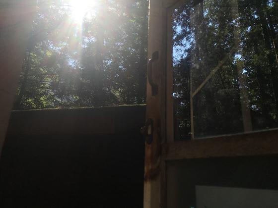 朝日が差し込む窓辺