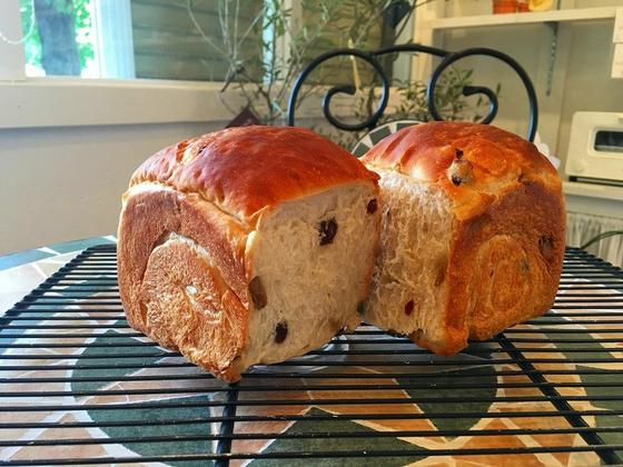シンボルパン:2色レーズン食パン