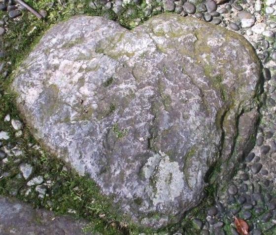 ハート型の石を探せ!