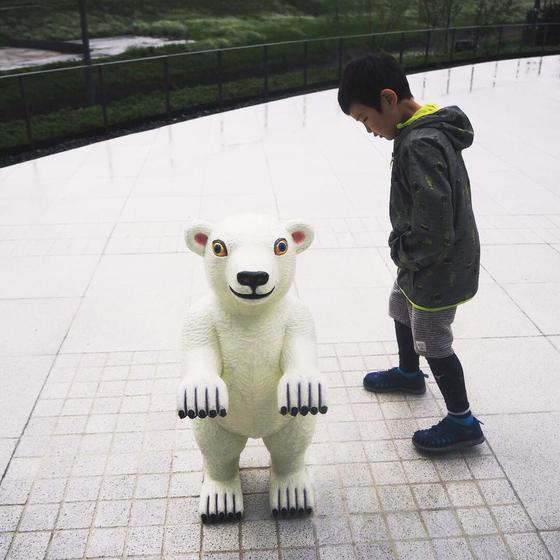 猪熊さんのクマ