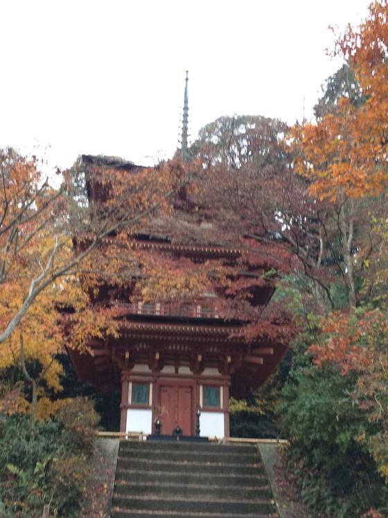 浄瑠璃寺 の 三重の塔