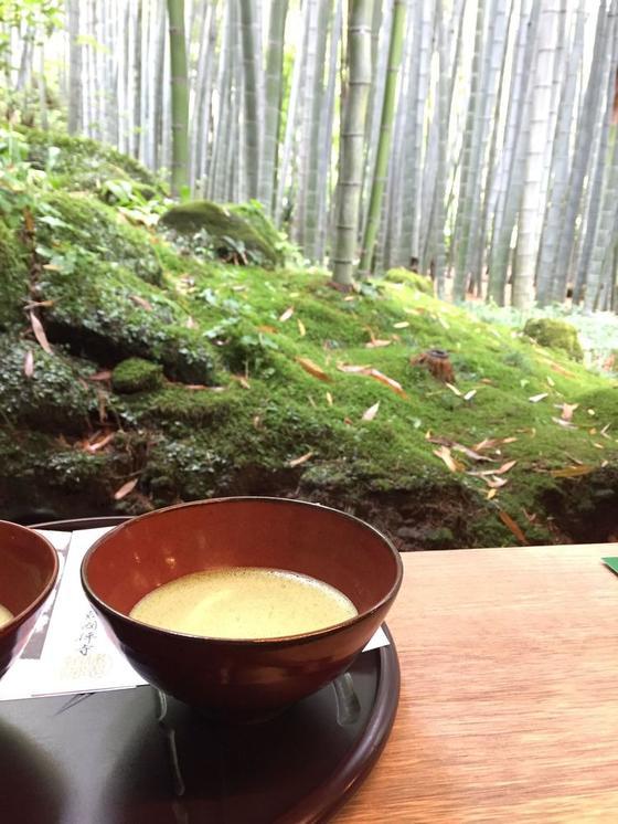 竹林を眺めながら抹茶