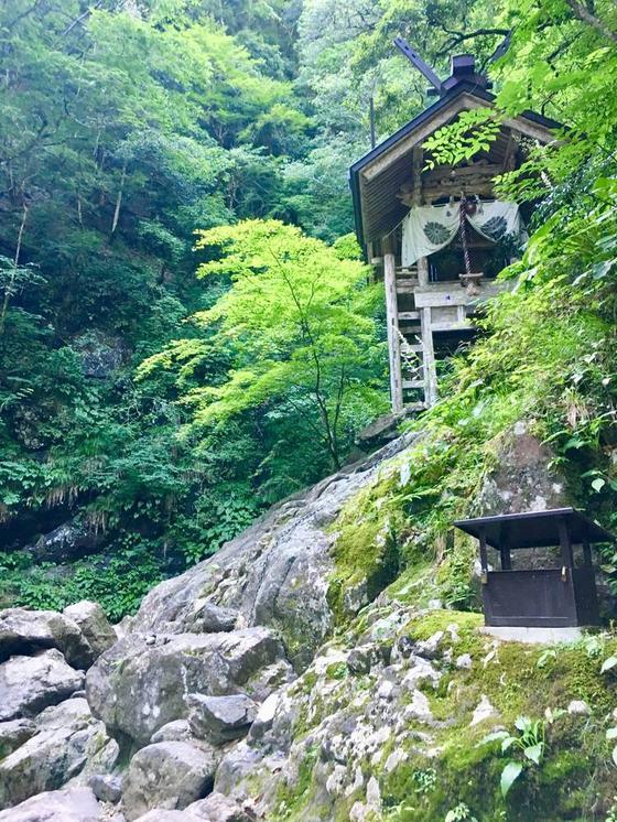 この岩崖登ります。