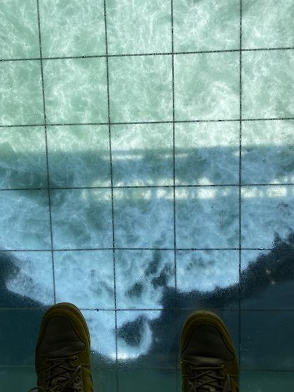 ガラス張りの床から撮影📸