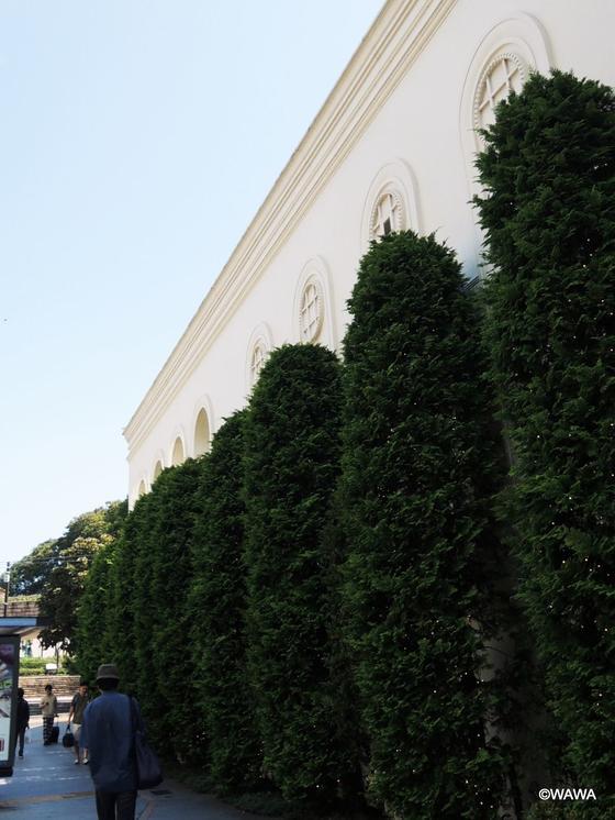 山手迎賓館の壁と植木横を通過