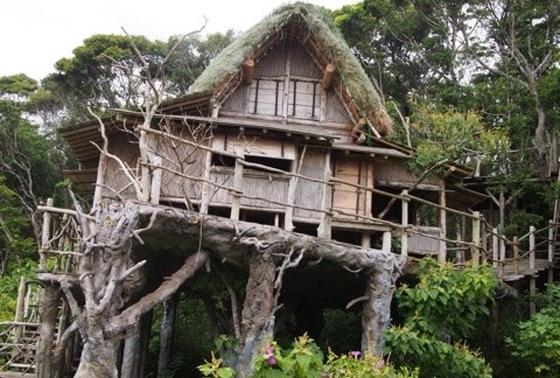 ツリーハウスは通称鬼太郎ハウス