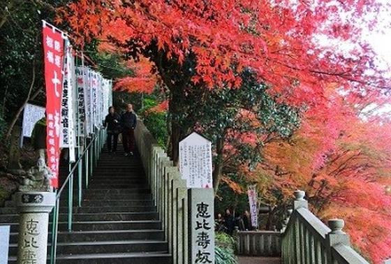 紅葉の参道
