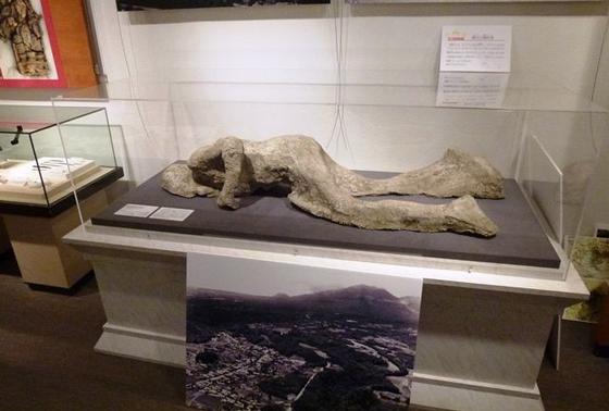 ベスビオ火山噴火の犠牲者のレプリカ