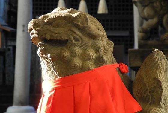 カワイイ狛犬