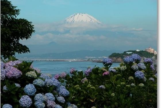 小高い山を登ってみてください。
