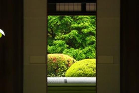 書院からの眺め