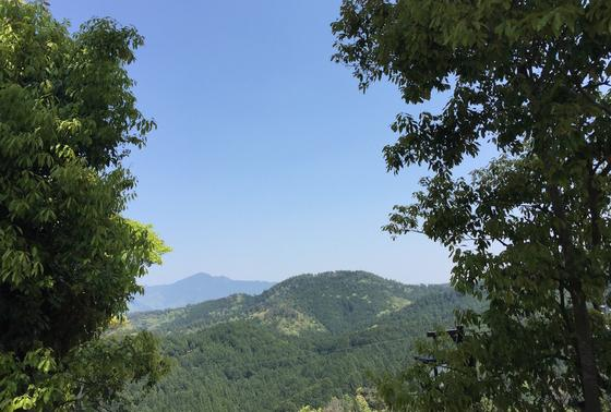 金峰山寺からみた吉野山の景色