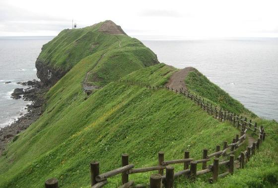 起伏に富んだ稜線上の遊歩道。