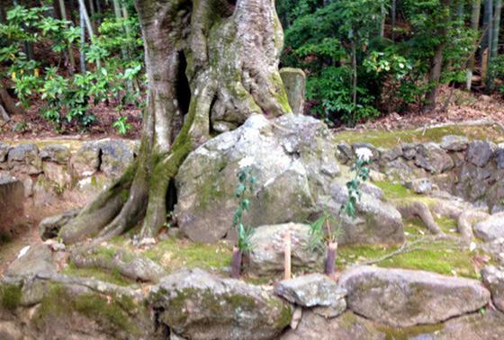 宗鏡禅師と細川頼之公のお墓