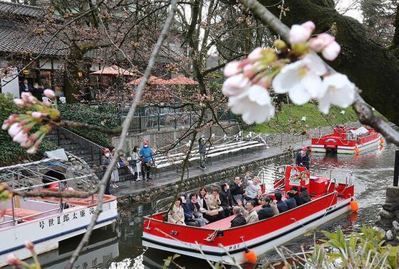 春の遊覧船乗船がオススメ