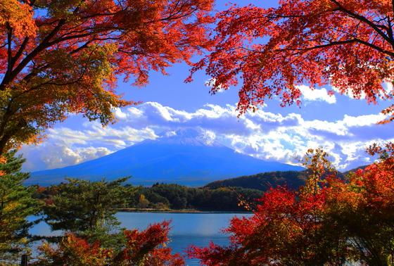 富士山と紅葉の絶景スポット