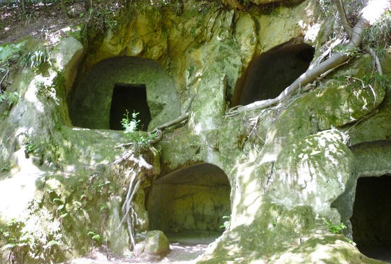 楊谷寺横穴墓