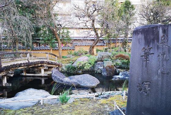 池と梅の木