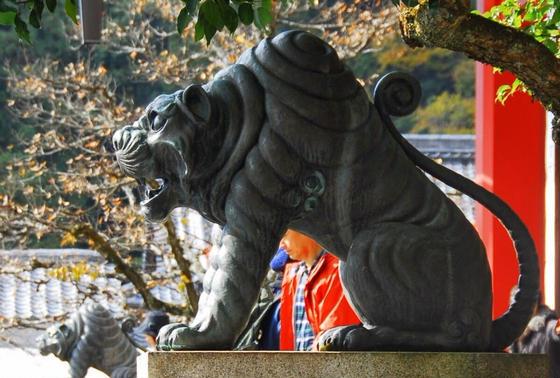 鞍馬寺の虎