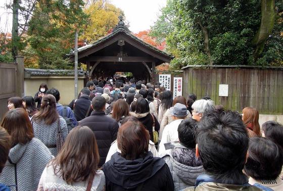 東福寺の臥雲橋