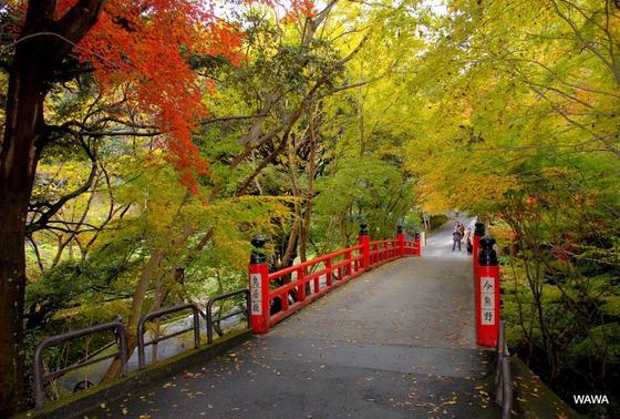 鳥居橋 今熊野観音寺