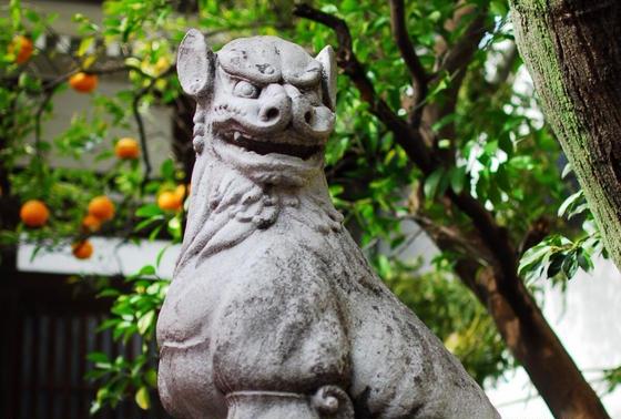 鳥越神社の狛犬さん