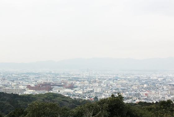 京都市内を一望