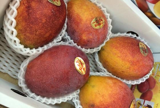 マンゴーが一つ100円とかありえない。