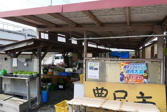 地元野菜の販売所