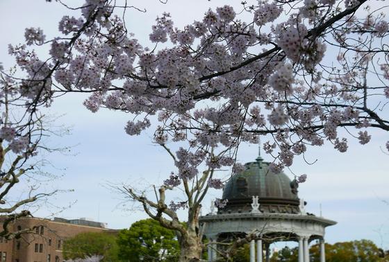 桜のシーズンには