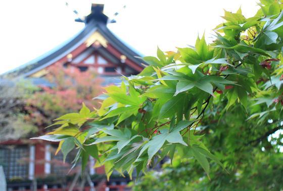 本格的な神社